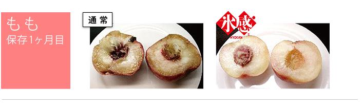 桃の保存1ヶ月間通常保存と氷感保存との比較